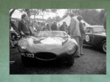 "JAGUAR D Type JWS 303 ex Ecosse  paddock at Prescott late 50s .10x7""am' photo"